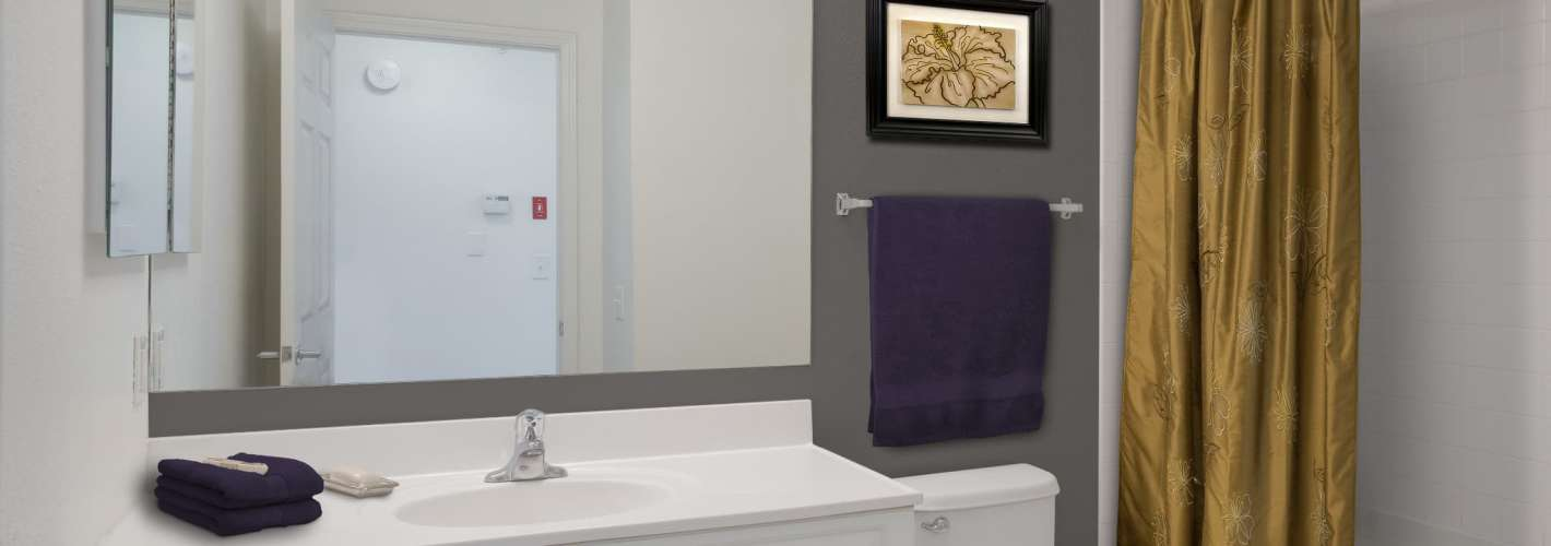 The Point at Pine Ridge : The Point at Pine Ridge Model Master Bathroom