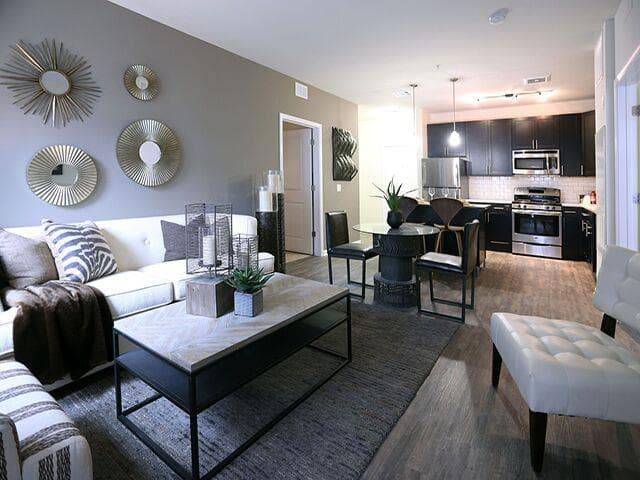 The Allure Mineola : Living Room