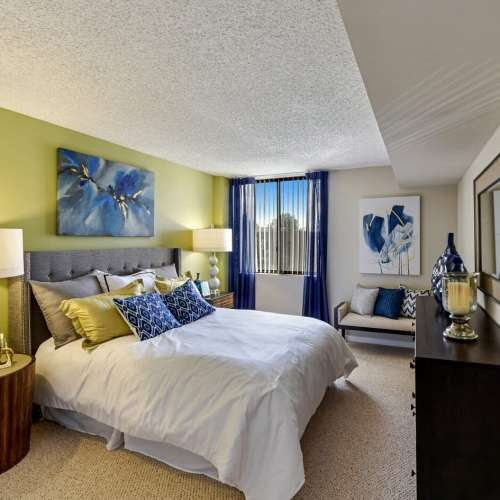 Dc Apartments For Rent: Rent Luxury Apartments In D.C.