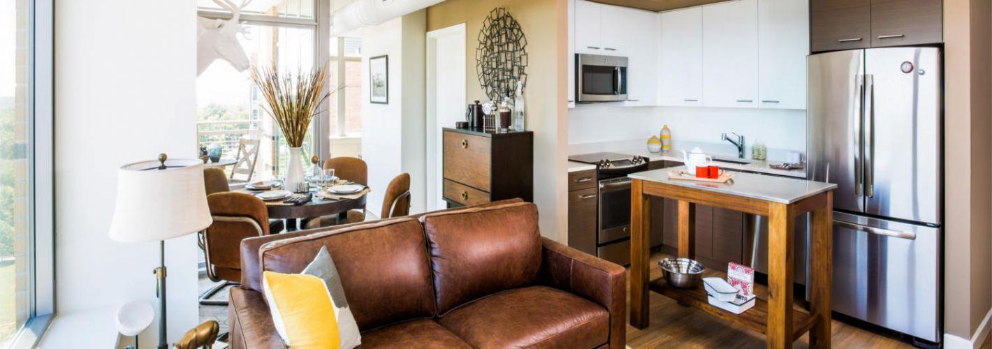 The View Ballston : Model Living Room 2