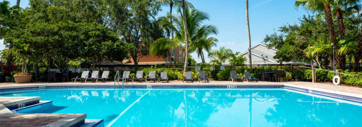 The Palms : Pool 2
