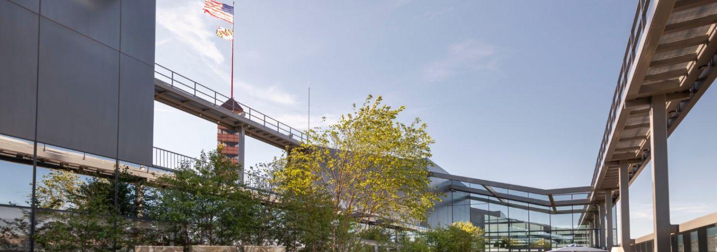 Luminary at One Light : Rooftop Garden