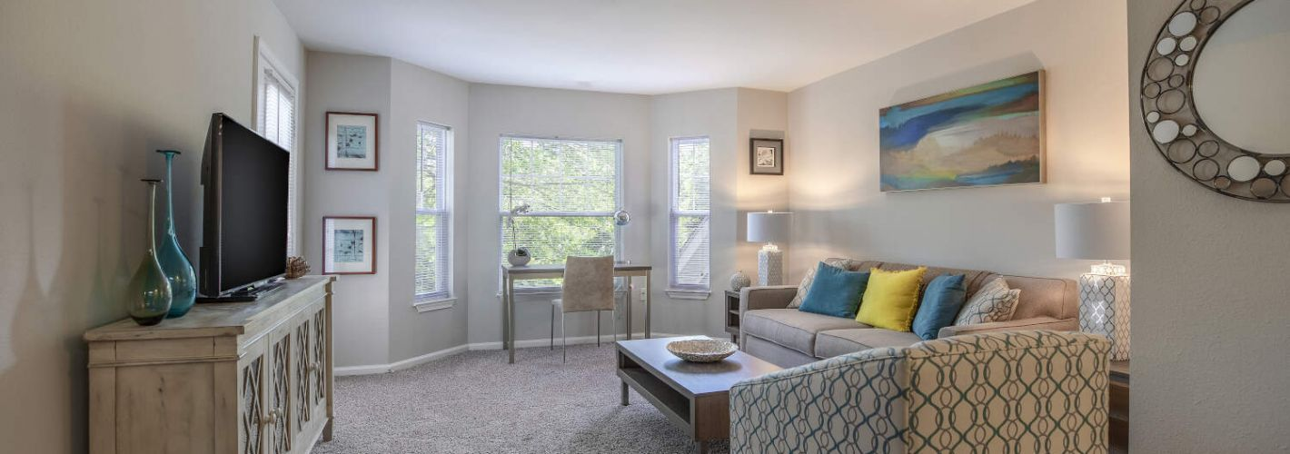 The Point at Still River : Living Room