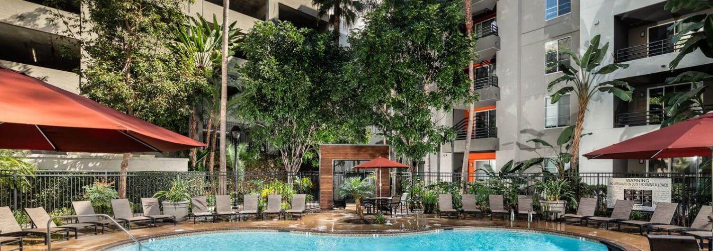 AO Santa Monica : Pool Daytime